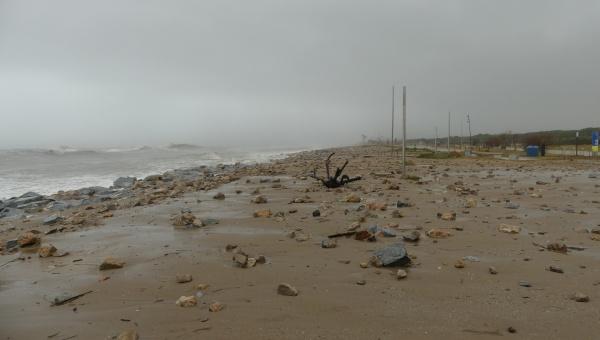 Efectes del temporal Glòria a la platja del Prat 2