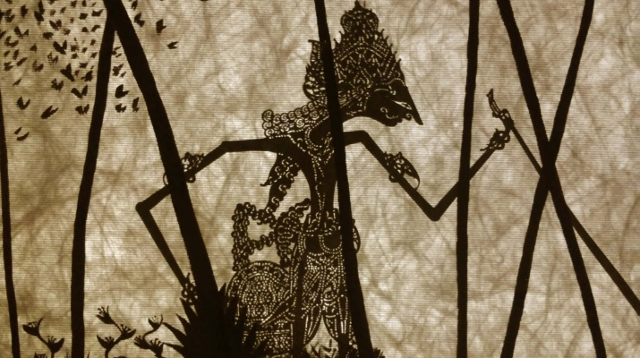 Les ombres que conten contes