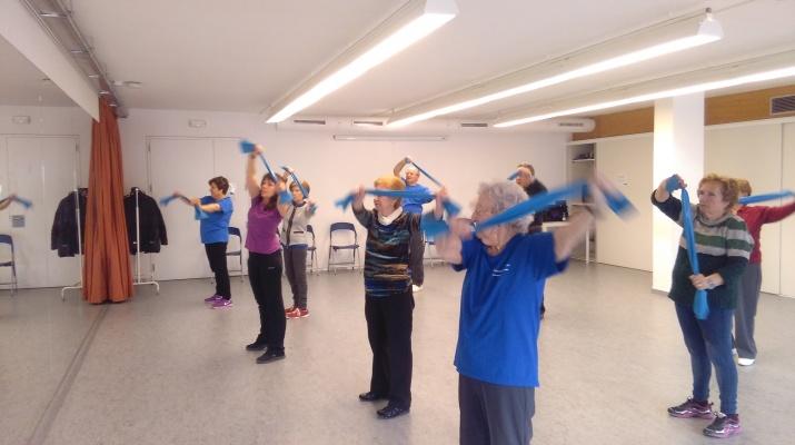 Grup de gent gran realitzant activitat física