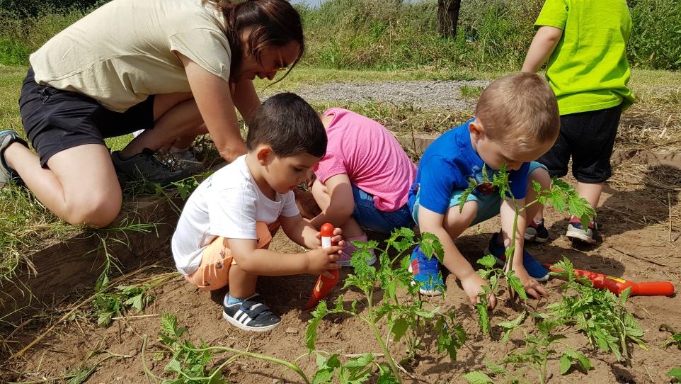 educacio_ambiental.jpg