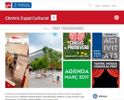 Aspecte de la nova web del Cèntric.