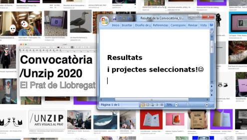 Resultat de la Convocatòria /Unzip Arts Visuals 2020