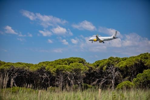 Un avió sobrevola el paratge de la Ricarda, als Espais Naturals protegits del Delta del Llobregat.
