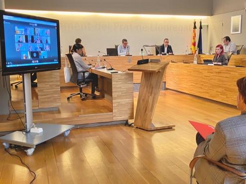 Pacte Local Ocupació Activitat Econòmica