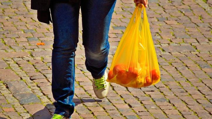 Bossa de plàstic amb compra.