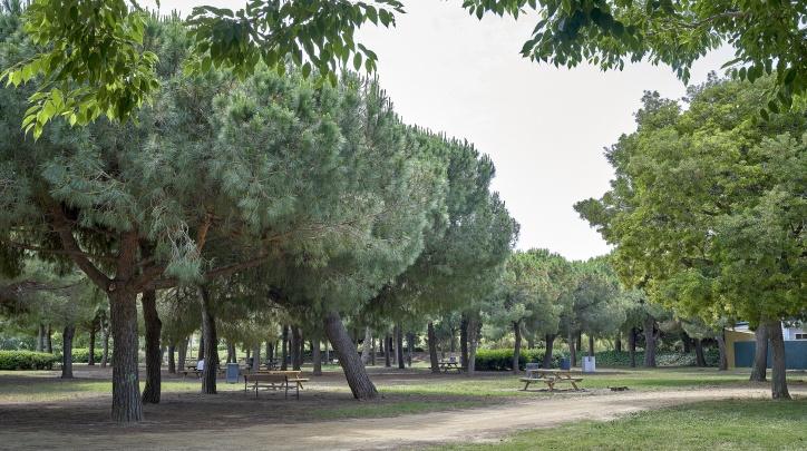 Parc Nou