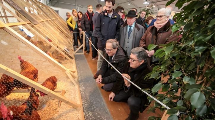 El president de la Generalitat i l'alcalde, a la Fira Avícola
