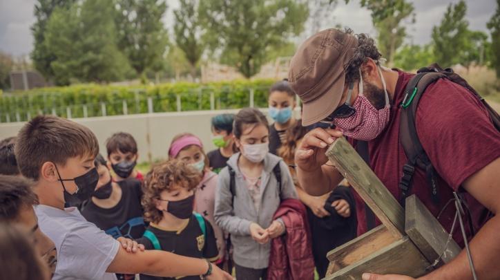 Educació ambiental balanç curs