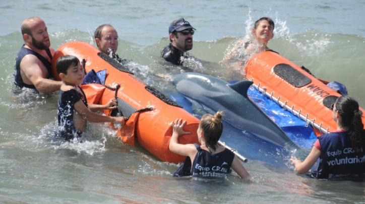 Rescat dofí CRAM