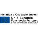 Iniciativa d'Ocupació Juvenil