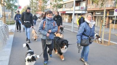 Passejada cívica amb gossos organitzada per Servei de Bon Veïnatge i Convivència, dissabte 16 de novembre de 2019