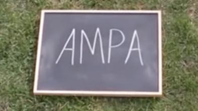 Vine a l'AMPA