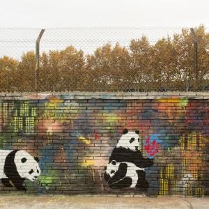 """Convocatòria """"Pintem a la paret"""" 2014"""