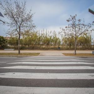 Pas de zebra del Prat