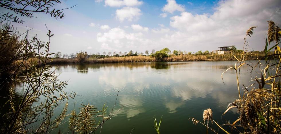 Espais naturals del Delta