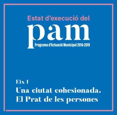 Imatge gràfica PAM 2017, eix 1