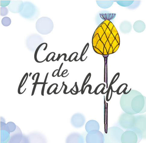 Canal de l'harshaf-485x475.png