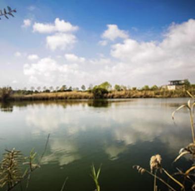 Espais naturals del riu